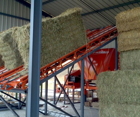 Square bale double chain conveyor photo